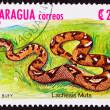 Постер, плакат: Canceled Nicaraguan Postage Stamp Bushmaster Snake Venomous Pitv