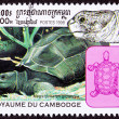 Canceled Cambodian Postage Stamp Aldabra Giant Tortoise Geochelo - Stock Photo