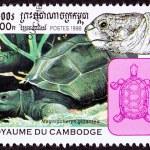 Canceled Cambodian Postage Stamp Aldabra Giant Tortoise Geochelo — Stock Photo #7897292