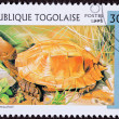 Stock Photo: Canceled TogPostage Stamp Orange Keeled Box Turtle PyxideMo