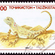 Canceled Tajikistan Postage Stamp Sunwatcher Toadhead Agama, Liz - Stock Photo