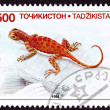 Royalty-Free Stock Photo: Canceled Tajikistan Postage Stamp Spotted Toadhead Agama Lizard