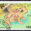 Canceled Laotian Postage Stamp Marine Cane Toad Bufo Marinus - Stock Photo