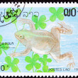 Canceled LaotiPostage Stamp Swimming Frog Muller's Platanna, — Stock Photo #7897378