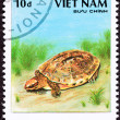Stock Photo: Canceled Vietnamese Postage Stamp Golden Coin Turtle cuortrifa