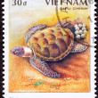 Royalty-Free Stock Photo: Canceled Vietnamese Postage Stamp Egg Laying Green Turtle Chelon