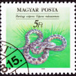 Hungarian Postage Stamp Danubian Meadow Viper Vipera ursinii, ra — Stock Photo