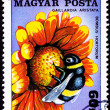 Stock Photo: HungariPostage Stamp Garden Bumblebee Bombus Hortorum Blanket