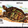 Postage Stamp, Turtle, Jicotea, North Antillean Slider, Trachemy - Stock Photo