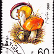 Canceled Yemeni Postage Stamp Clump Slippery Jack Mushroom Suill - Stock Photo