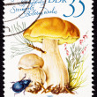 Canceled East German Postage Stamp Porcini Mushroom, Boletus Edu - Stock Photo
