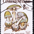 Canceled Czechoslovakian Postage Stamp Poisonous Death Cap Mushr - Stock Photo