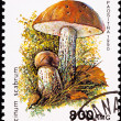 Canceled Madagascar Postage Stamp Clump Birch Bolete Mushroom Le — Stock Photo