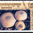 Stock Photo: Canceled Cambodian Postage Stamp Clump Common Puffball Mushroom