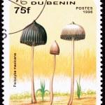 Canceled Benin Postage Stamp Teonanacatl Psilocybin Psychedelic — Stock Photo