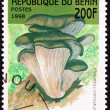 Canceled Benin Postage Stamp Oyster Mushroom, Pleurotus Ostreatu - Stock Photo