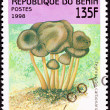 Canceled Benin Postage Stamp Clump Mushroom Tephrocybe Anthracop — Stock Photo
