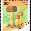 Royalty-Free Stock Photo: Canceled Benin Postage Stamp Brown Tylopilus Felleus Formerly Bo
