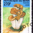 Canceled Benin Postage Stamp Clump Mushroom Hohenbuehelia Geogen — Stock Photo