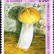Canceled GuinePostage Stamp Granular Mushroom — Stock Photo #7897764
