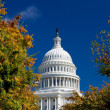 Capitol Building Framed Autumn Foliage Washington DC, Polarized - Stock Photo