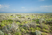 High Desert Sage Brush North Central New Mexico Wide Angle — Stock Photo