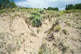 Desert Wash Arroyo Showing Erosion New Mexico — Stock Photo