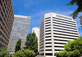 High Rise Office Buildings Rossyln Virginia USA — Stock Photo