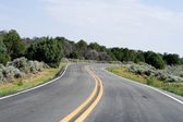 Bend in the Road, High Desert, New Mexico, USA — Stock Photo
