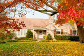 House Philadelphia Yellow Fall Autumn Leaves Tree — Stock Photo