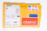 Fragile Canadian Airmail Mailer Package Customs — Stock Photo