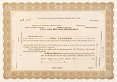 Stock Certificate Lovelock, Nevada 1918 100 Shares — Stock Photo
