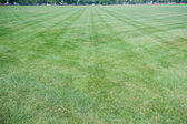 Wide Angle Lawn With Criss-Cross Mowing Marks — Stock Photo
