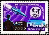 太空狗 chernushka 人造卫星 9 火箭 — 图库照片
