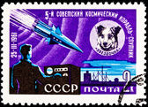 Ruimte hond chernushka sputnik 9 raket — Stockfoto