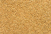 Full Frame Corn Meal Bird Food Pellets, Shanghai, China — Stock Photo