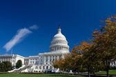 Capitol Building, Dome, Autumn Foliage Washington DC, Polarized — Stock Photo