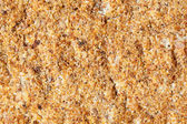 Full Frame Sandpaper Like Rough Cracker, Extreme Closeup Macro — Stock Photo