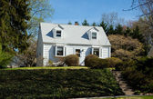 XXXL Clapboard Cape Cod Single Family House Suburban Maryland, U — Zdjęcie stockowe