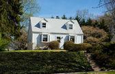 Xxxl clapboard кейп-код одной семьи дом пригородные мэриленд, u — Стоковое фото