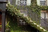 Ivy Covered Staircase Outside Home Savannah Georgia Wrought Iron — Stock Photo