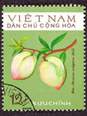 Vietnamese Post Stamp Peach Prunus Persica Branch — Stock Photo