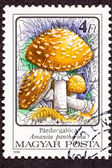 Post Stamp Amanita Pantherina Panther Cap Mushroom — Stock Photo