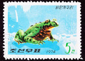 Canceled North Korean Postage Stamp Oriental Black Firebelly Toa — Stock Photo