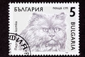 Canceled Bulgarian Postage Stamp Fuzzy Longhaired Persian Cat Br — Stock Photo