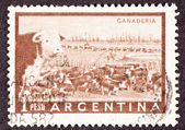 Canceled Argentinean Postage Stamp Heard of Beef Cattle Argentin — Stock Photo