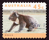 Canceled Australian Postage Stamp Koala Bear Sitting on Grassy G — Stock Photo
