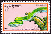 Canceled Cambodian Postage Stamp Green Snake Guatemalan Palm-Pit — Stock Photo