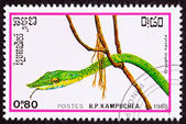 Canceled Cambodian Postage Stamp Head Green Vine Snake Ahaetulla — Stock Photo