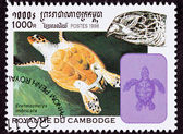Canceled Cambodian Postage Stamp Swimming Hawksbill Sea Turtle, — Stock Photo